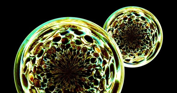 How the Hidden Mathematics of Living Cells Could Help Us Decipher the Brain – Singularity Hub